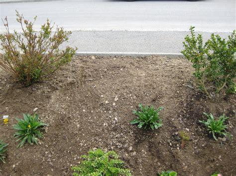 Böschung Bepflanzen Pflegeleicht by B 246 Schung Bepflanzen Eigene Ehre Retten Page 4 Mein