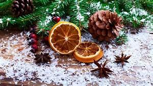 Diy, Decorating, An, Outdoor, Christmas, Tree, The, Natural, Way, U2022, Arbor, Day, Blog
