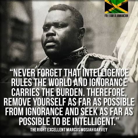 Hope you'll find the wisdom and motivation you need today for your work and your life. Remember. (With images) | Marcus garvey quotes, Black ...