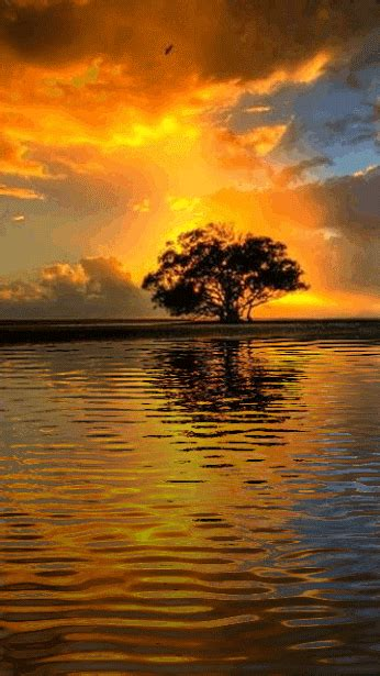 photo sunsetwcboohgif water reflection water moving