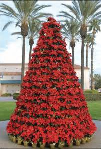 poinsettia tree holiday trees pinterest