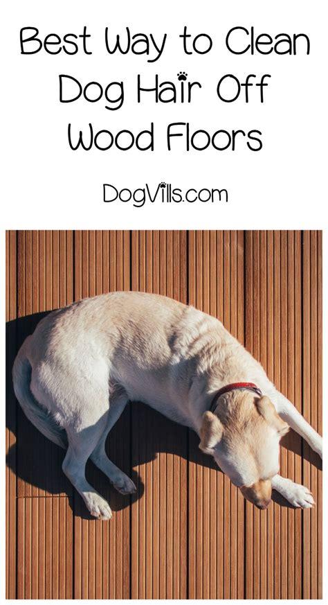 best ways to clean hair hardwood floors dogvills