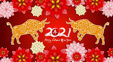 red floral chinese  year  poster    vectors clipart graphics