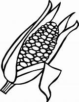 Corn Coloring Ear Candy Drawing Pages Getdrawings Clipart Stalk Printable Colouring Getcolorings Cob sketch template
