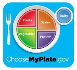 personalized cheese plate usda food pyramid replaced by food guide dinner plate
