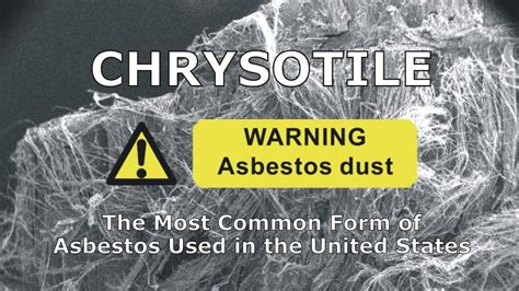 chrysotile   common form  asbestos