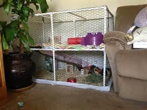 Guinea Pig Cages Homemade