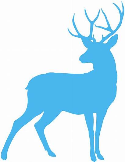 Deer Silhouette Creazilla Silhouettes Transparent Drawing Moose