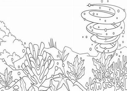 Sea Coloring Under Nature Pages Ocean Colouring