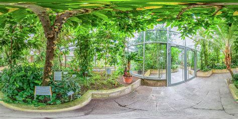 Botanischer Garten Würzburg  Tropenschauhaus Tropische