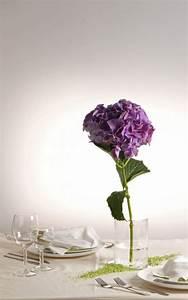 Einzelne Blume Vase : velou deko systemvase ~ Indierocktalk.com Haus und Dekorationen
