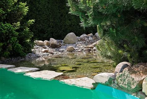 gartenteich schwimmteich und pool gartengestaltung mit