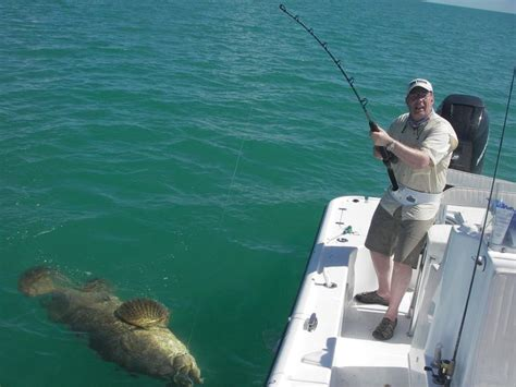 fishing florida islamorada lures keys fish bait saltwater marlin catch kind any hook tips sport surf fly rigs trout dolphin