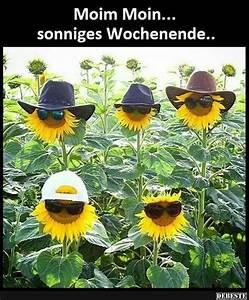 Lustiges Bild Wochenende : sonniges wochenende lustige bilder spr che witze echt lustig bilder pinterest ~ Frokenaadalensverden.com Haus und Dekorationen