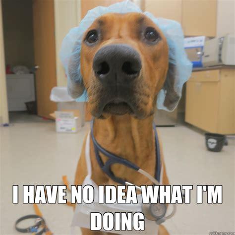 Dog Doctor Meme - med2000 guide mandus