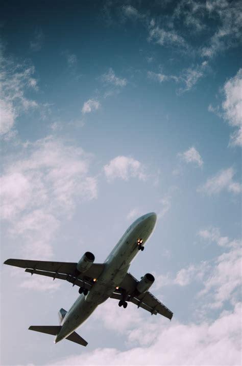 Bid On Travel Swiftbeat Taking Flight