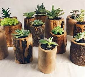 Rondin De Bois Pour Jardin : 1001 id es jardini re d 39 int rieur cultivez votre ~ Edinachiropracticcenter.com Idées de Décoration