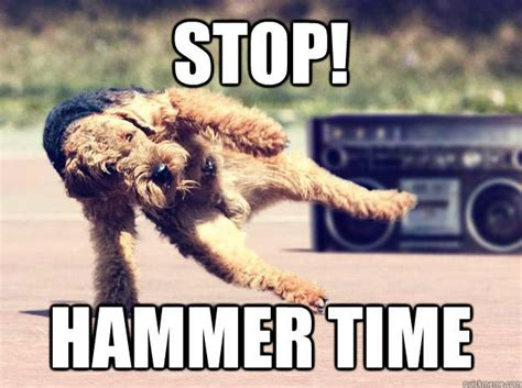 Mc Hammer Meme - stop hammer time u can t touch this know your meme
