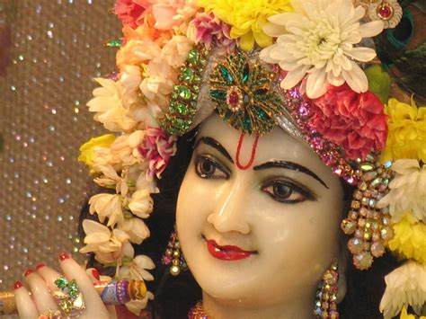 shree krishna wallpaper   gallery