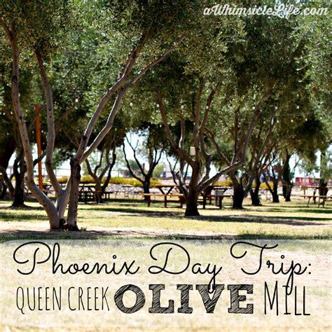 queen creek olive mill   taste olive oil