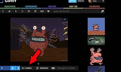 Giphy Gifs Embed Website