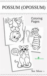 Coloring Opossum Printable Animal Sheets Momjunction Possum Animals Craft Colouring Nocturnal Easy Favorite Activity Activities sketch template
