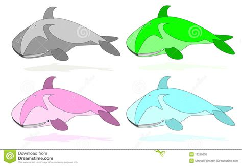 what color are whales color whales royalty free stock image image 17259606