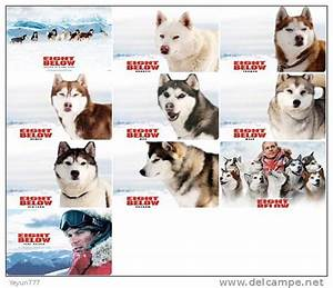 eight below dog names - Movie Search Engine at Search.com