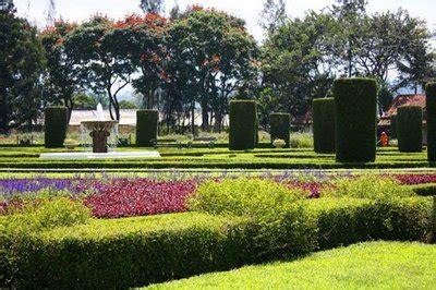 taman bunga cihideung  mengagumkan wisata bandung