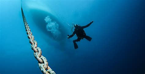 divemontenegro com welcome to the best diving experience