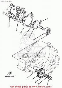 Search Results For  U201csuzuki Rm80 1977 1979 Usa Parts Lists