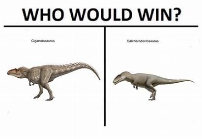 Meme Dinosaurs Am Curious Fight Please Into