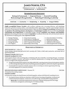 financial consultant resume example With resume consulting services
