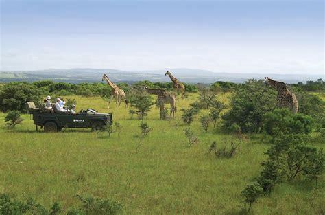 South African Safari And Big 5 Tours