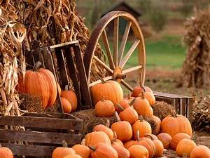 Fall Harvest Wallpapers - Wallpaper Cave