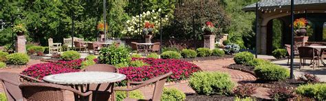 ls for nursery nursery st louis mo trees flowers shrubs st charles