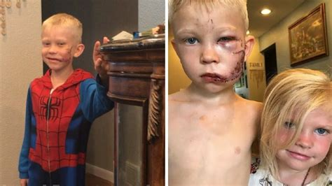 6-Year Old Boy Hailed as 'Superhero' After Jumping In ...