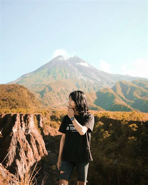 kebun tebu wisata unik  kulon progo yogyakarta