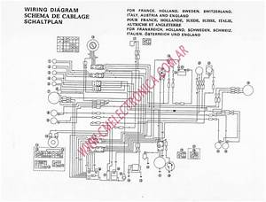 Diagram  Cf Moto 500 Wiring Diagram Full Version Hd Quality Wiring Diagram
