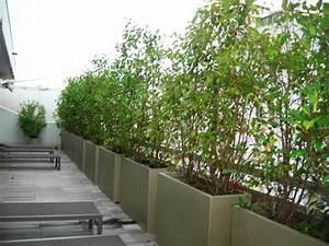creer un brise vue bacs et jardins With delightful faire un jardin zen exterieur 6 la decoration exterieure avec un treillis de jardin