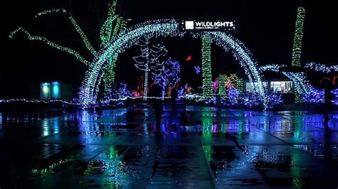 citystream wildlights at the woodland park zoo