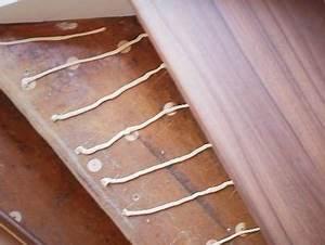 Treppenstufen Mit Laminat Verkleiden : laminat auf treppen verlegen montagekleber auftragen foto bhk holz und kunststoff kg h ~ Sanjose-hotels-ca.com Haus und Dekorationen