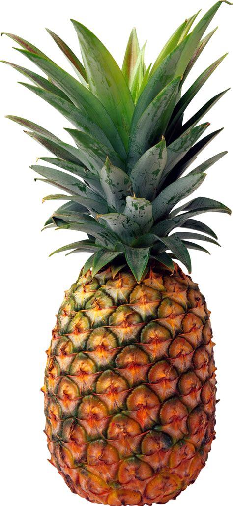 Transparent Pineapple