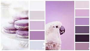 Welche Farben Passen Zu Petrol : welche farben passen zu flieder und lila farbpalletten pinterest flieder lila und farben ~ Bigdaddyawards.com Haus und Dekorationen