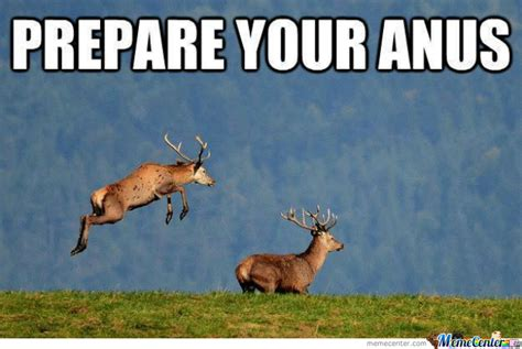 Prepare Your Anus Meme - dirty deer by recyclebin meme center
