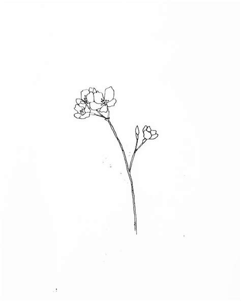 Wild flower 3 | TATTOOS FOR WOMEN - small, simple line drawing & floral tattoos | Flower tattoos