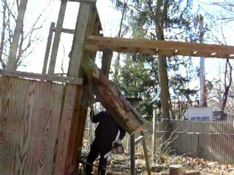 Treehouse Falling Youtube