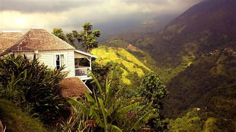 strawberry hill in jamaica strawberry hill st andrew jamaica