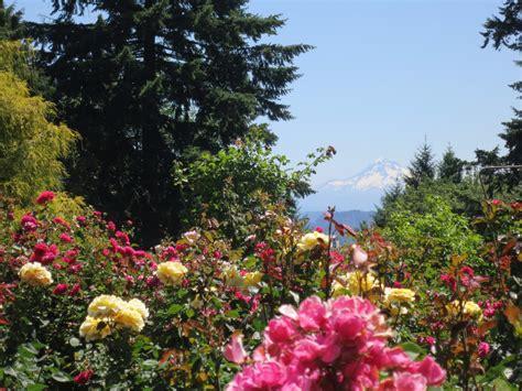 garden in portland or rose garden store portland oregon beautiful rose garden with