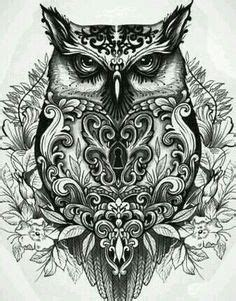 awesome images   internet pinterest owl